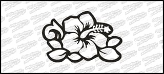 Hibiskus E 8cm biała