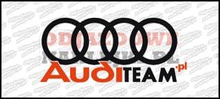 Audi Team.pl 15cm