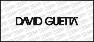 David Guetta 15cm
