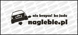 naglebie.pl Audi A6 C6 Avant 30cm biała