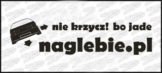 naglebie.pl Renault 19 30cm biała
