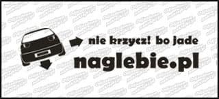 naglebie.pl Seat Ibiza II FL 20cm biała