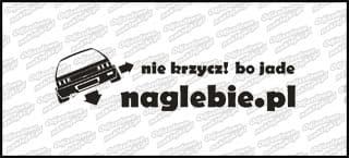 naglebie.pl Honda Civic IV 20cm biała