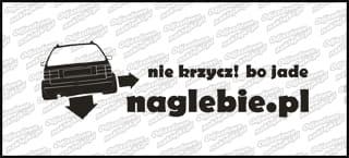 naglebie.pl VW Passat Kombi 30cm biała
