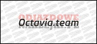 Octavia.team 30cm