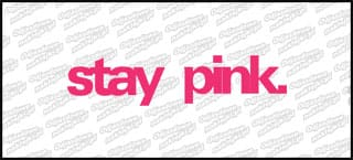 stay pink. 20cm